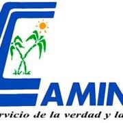 Camino espera cambio actitud de dominicanos