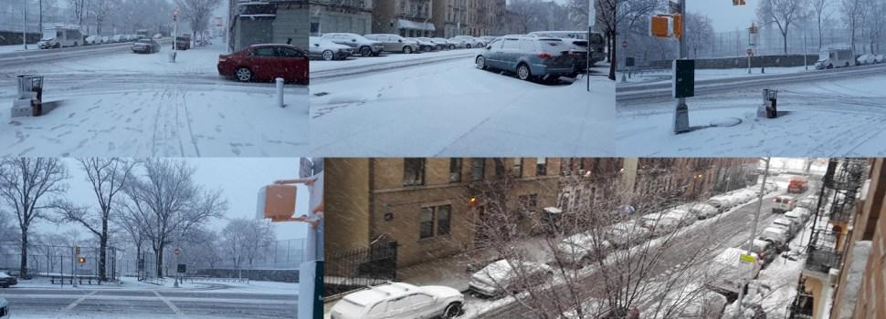 Raro fenómeno ataca zonas de NY