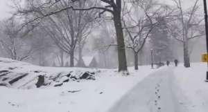 Experiencia por nevada en el Central Park