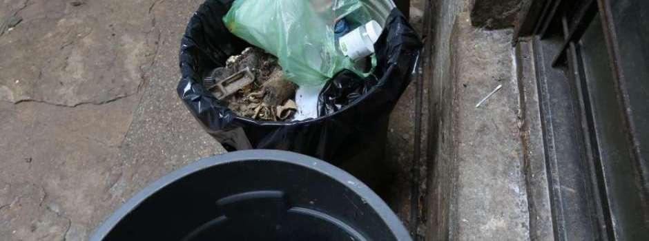 Hallan fetos en depósito basura; buscan otro
