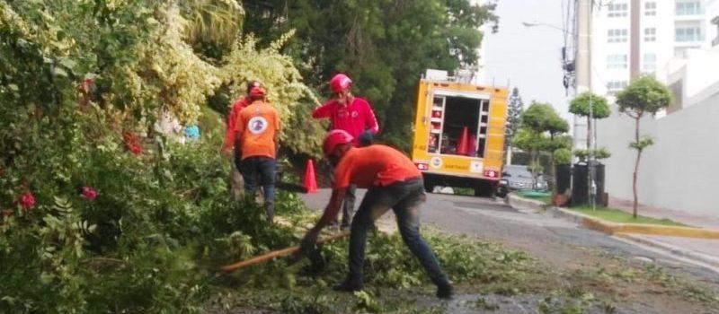 Ventarrón y lluvias causan daños en comunidades