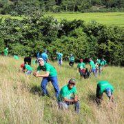 Edenorte reforesta zona comunidad Juma