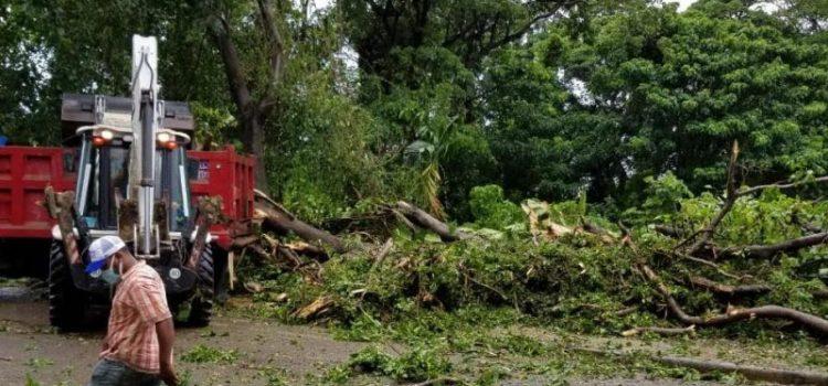Tormenta Isías daña viviendas y servicio eléctrico zona norte