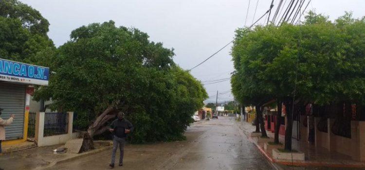Miles usuarios de electricidad afectados en zonas del Cibao