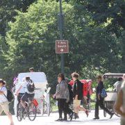 Un hombre es apuñalado en el Central Park