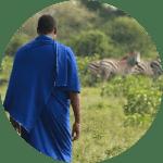 Dorobo Fund   Maziwe Island   Hadza Hunter Gatherers