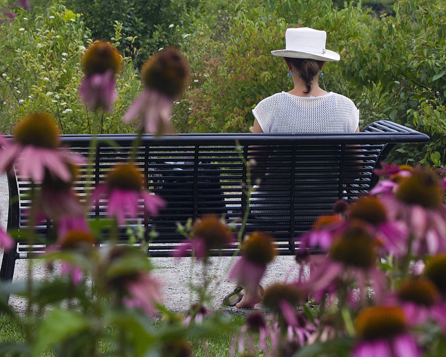 Woman reading in calming Humber Bay Butterfly Habitat, Toronto, Ontario, Canada.