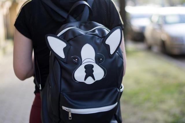doggy rucksack