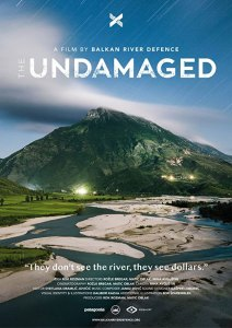 The Undamaged / Los no dañados