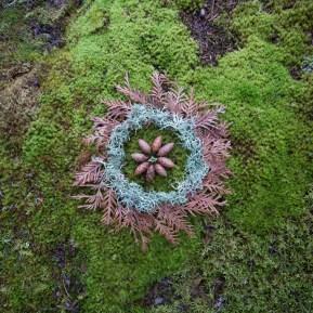 Wheel of Cedar