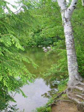 Mirror Lake, NH