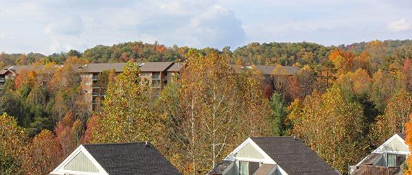 MountainLoft View