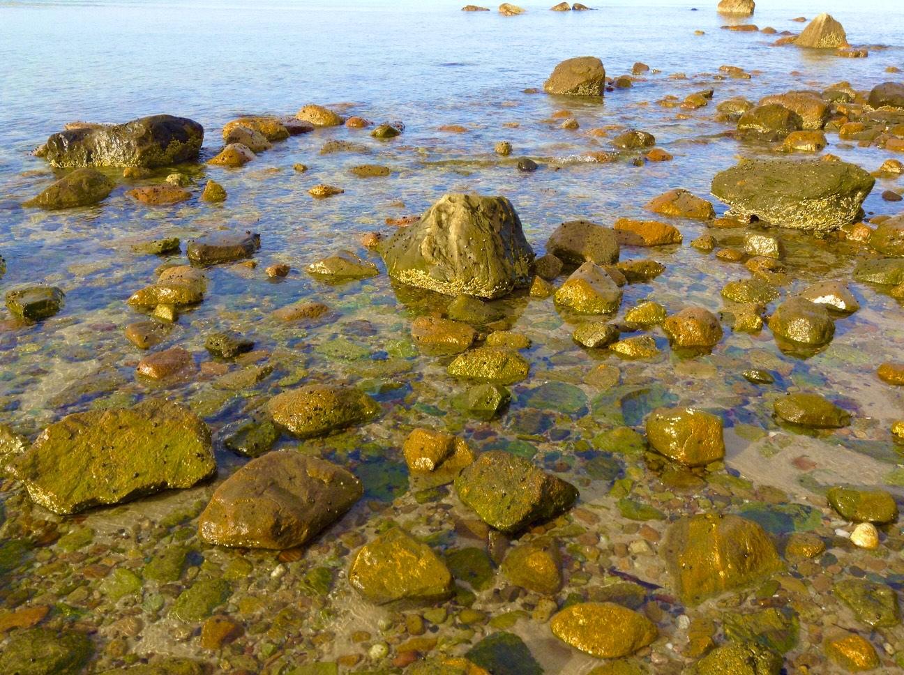 Barb-Petricone-large-rocks