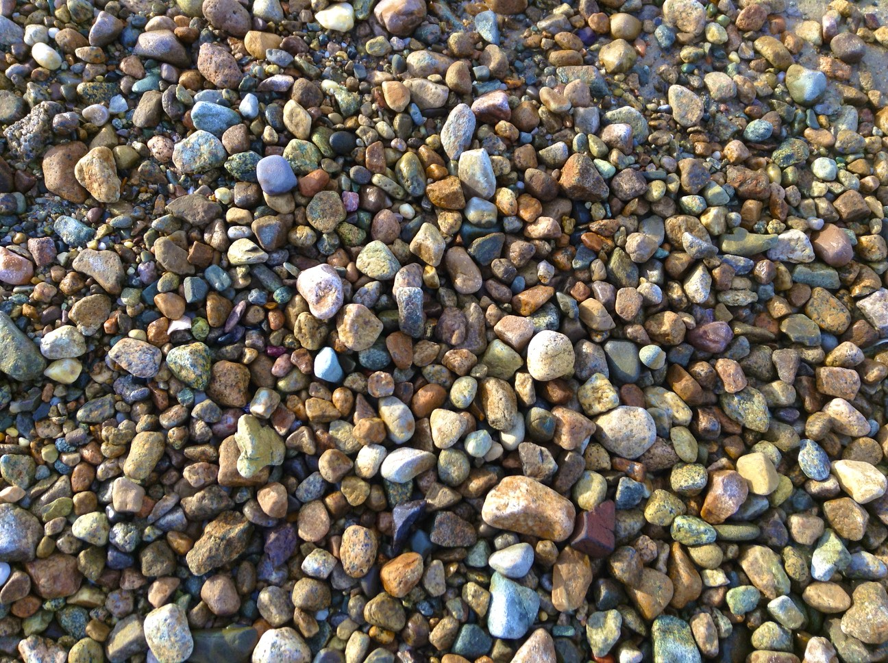 Barb-Petricone-little-rocks