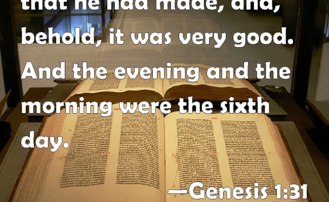 Did God Create Everything Or Not My Understanding Of Bible Passages