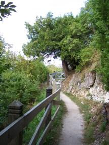 Pontiac Trail Mackinac Island Mi