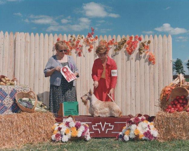 "CH SANDGREGS BARBARY SUNSHINE  2000 ""Jenna"""