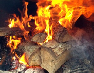 Barbecue Trends for 2015  Barbecuebiblecom