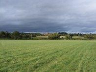 Sunny field under leaden sky, River Teme, Eastham