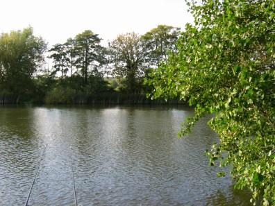 Thames at Sonning