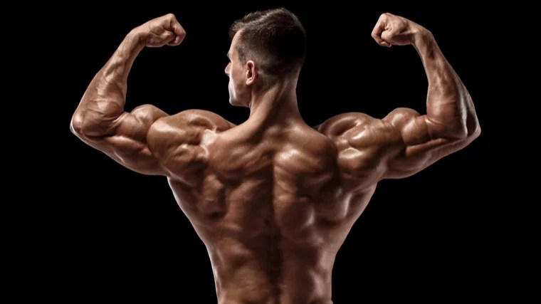 man flexing back and biceps