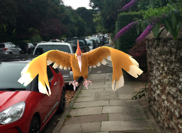 A Pokemon bird hovers above a street