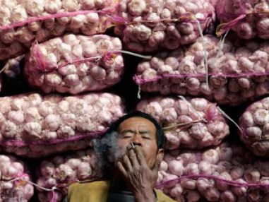 Chinese Garlic Lord relaxes, thinking of all the money he is making with his stash of garlic. Another good reason to Buy Local.
