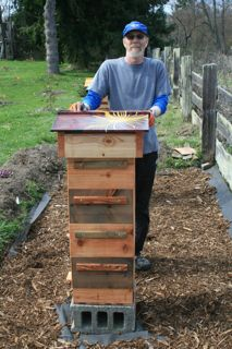 Jeff Ward, Hive Builder