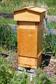Honeybee Swarm Traps Custom-Built to Fit Your Warre Hive