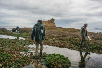 Freshwater Bay Seaweed Foragers