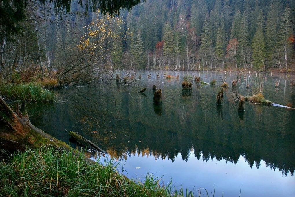 Lacul Rosu Judetul Harghita