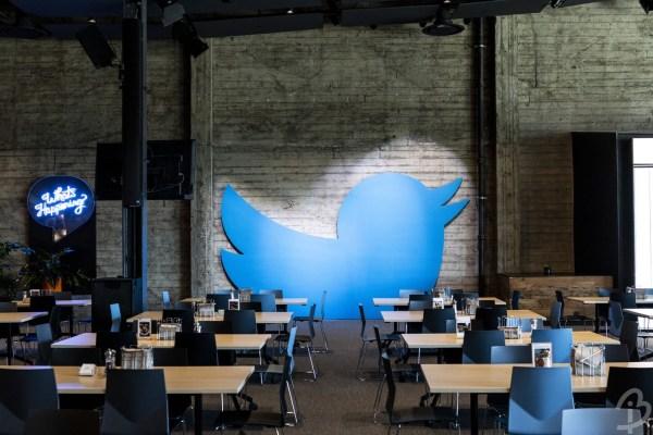 dimensiune twit