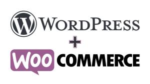 WordPress & WooCommerce Site Kurulumu ve Ayarları (Eğitim Dahil)