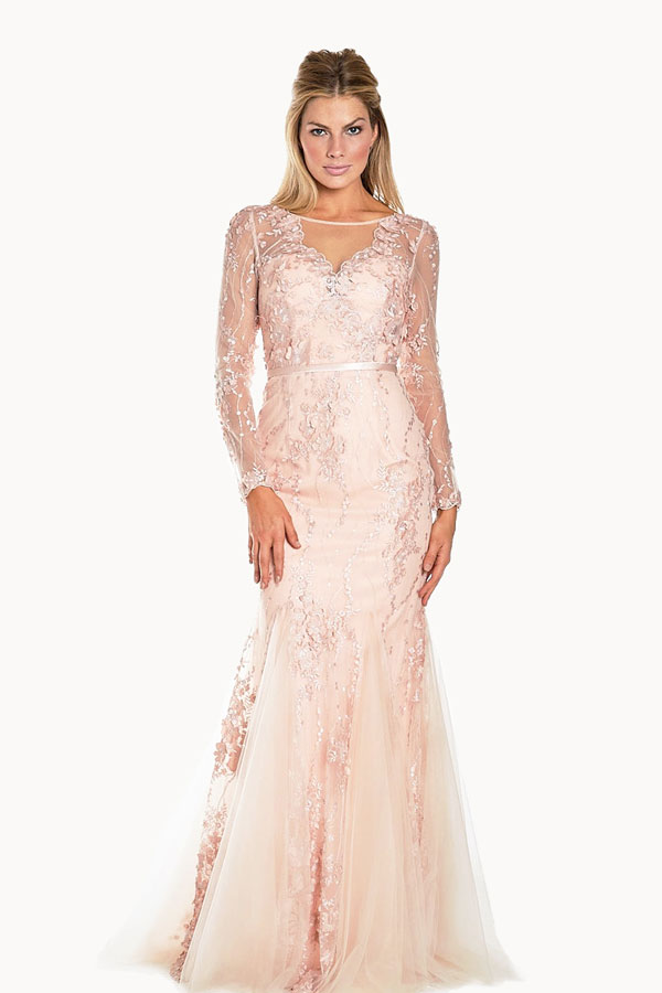 Long Sleeve Lace Embroidered Gown