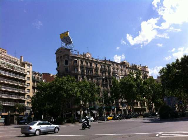 Búho ojos amarillos Diagonal Barcelona