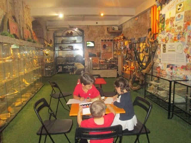 Museo del Mamut de Barcelona