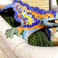 Gaudi's pet