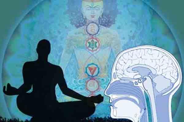 meditacion_harvard