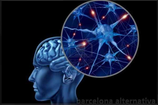 CONSEJOS PARA FORTALECER LAS NEURONAS