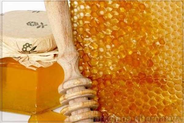 detecta la miel verdadera