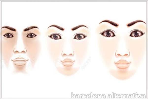 rasgos de la cara