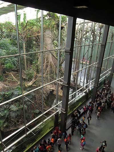 CosmoCaixa  Sciencemuseum Barcelona bezoeken