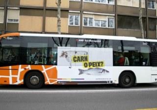 autobús contra la homofobia