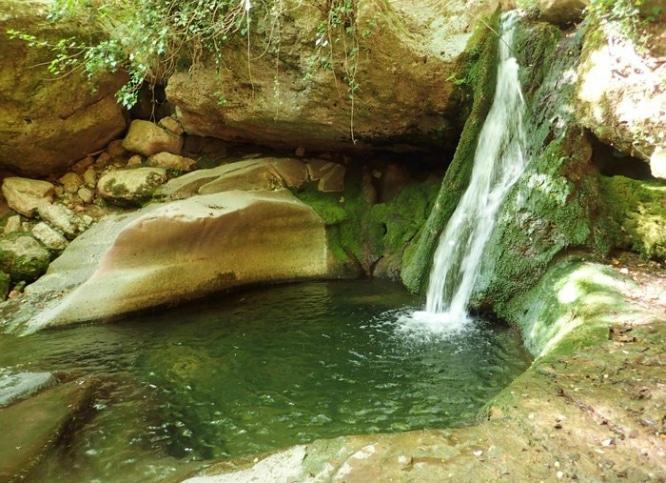 Picinas naturales picinas naturales granollers de for Piscinas naturales cerca de toledo