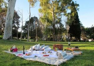 picnic_barcelona_lujo_baja