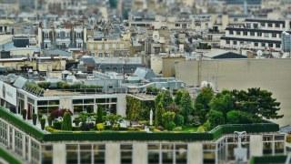 donde-terrazas-verdes