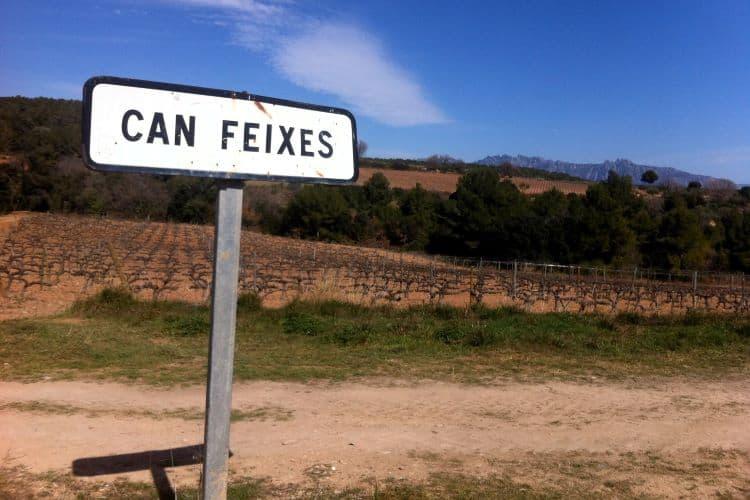 Wijnstreek Penedes