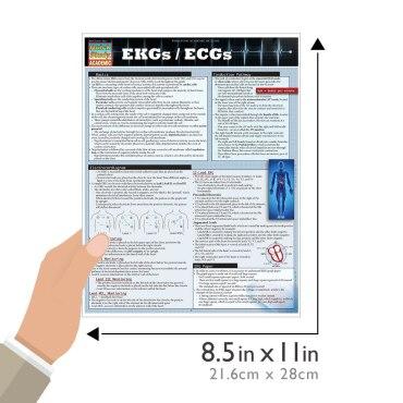 Quick Study QuickStudy EKGs / ECGs Laminated Study Guide BarCharts Publishing Inc EKG ECG Reference Size