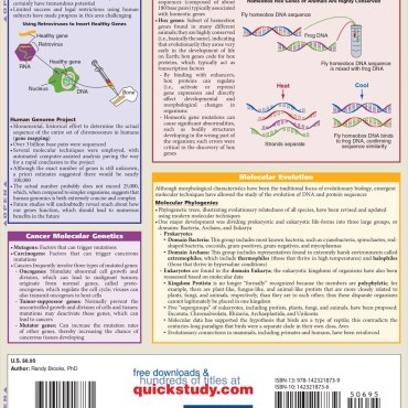 Quick Study QuickStudy Molecular Biology Laminated Study Guide BarCharts Publishing Science Guide Back Image
