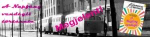 IX. Eunice Kennedy Shriver Emléknap @ IX. Eunice Kennedy Shriver Emléknap | Kazincbarcika | Magyarország